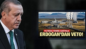 Ak Parti'nin Termik Santral Çelişkisine Cumhurbaşkanı Erdoğan'dan Veto!