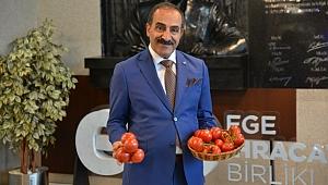 İdlib'de varılan ateşkes sonrası, Türk domatesine Rusya vizesi!