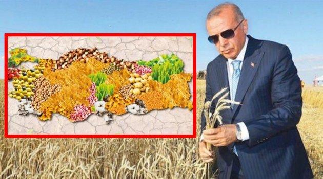 Başkan Erdoğan: Türkiye Ata tohumunda kararlı